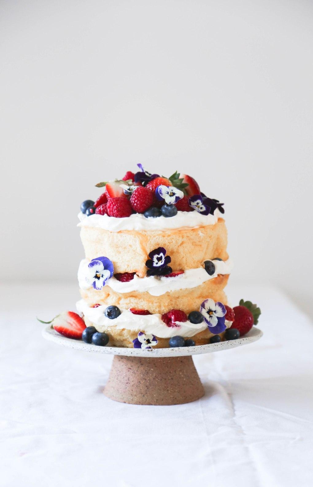 Sponge cake7